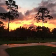 27 - Larisa's Sunrise