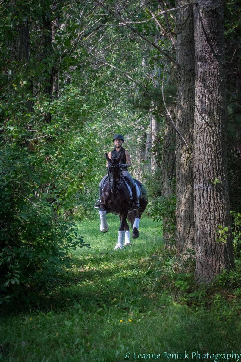 Ebony in woods - Leanne.jpg